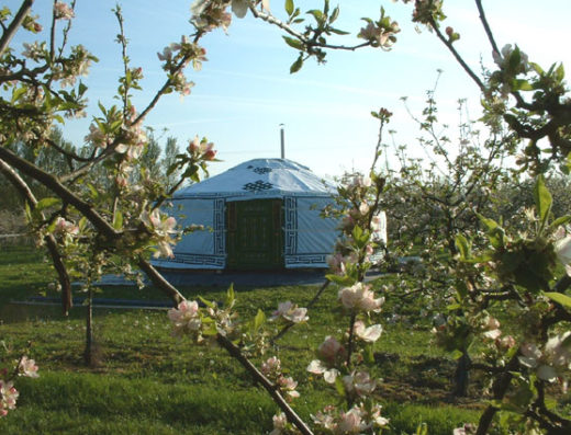 Apple wood Glamping
