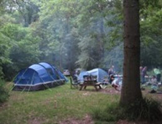 Bush Farm Woodland Campsite