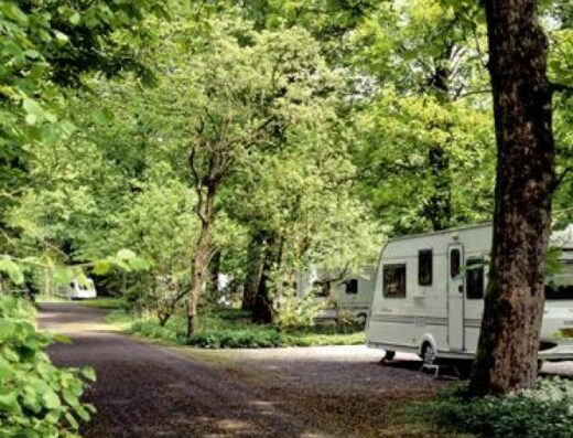 Kendal Caravan Club Site (formerly Low Park Wood)